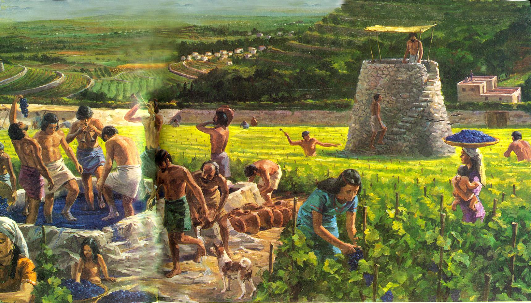 Billedresultat for vineyard work i bilbel